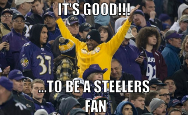 I LOVE THIS!! Especially since I DO NOT like the Ravens at all!! GO STEELERS!!