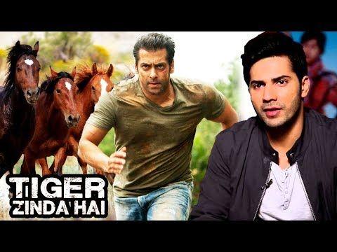 Salman Khan Chase Scene With Horses In Tiger Zinda Hai, Varun Dhawan's EMOTIONAL Message To Salman - https://www.pakistantalkshow.com/salman-khan-chase-scene-with-horses-in-tiger-zinda-hai-varun-dhawans-emotional-message-to-salman/ - http://img.youtube.com/vi/_Gua4nv9xOE/0.jpg