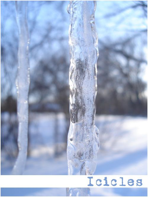 Polar Vortex Icicles in Chicago. Brought to you by creative in Chicago