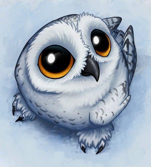 Pin by Nita Adams on January in 2020 | Owls drawing, Bird ...