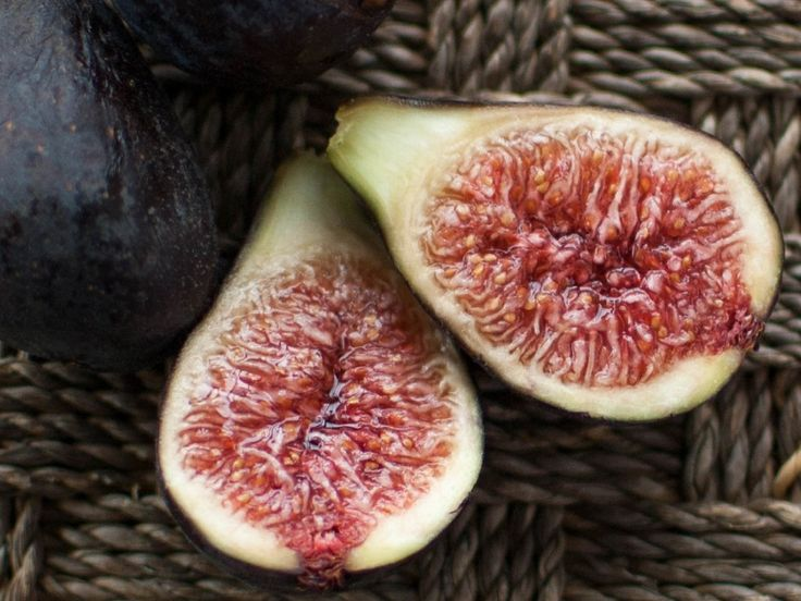 in Tasman, NZ  -  Growing and Harvesting Figs | Country Trading Blog