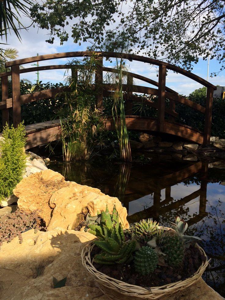 Oltre 1000 idee su laghetti da giardino su pinterest for Immagini di laghetti artificiali