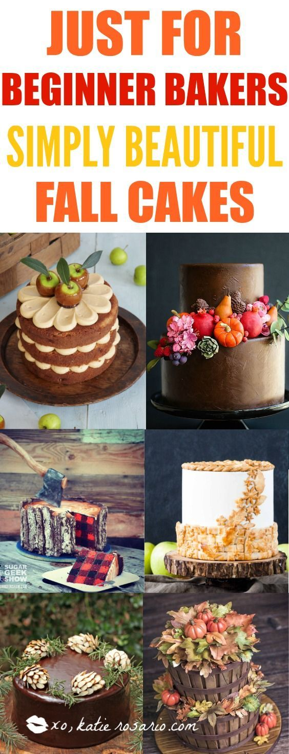Sweater weather is not complete without cake!!! Nothing is more beautiful and comforting than fall cakes! This guide is so so perfect for beginner bakers and newbie cake decorators. Pumpkin spice and apple pie in cakes in amazing! I love the fall rich col