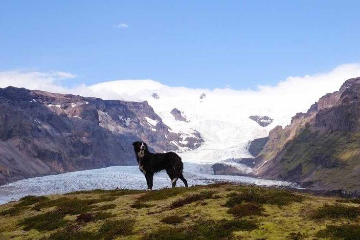 Anke Nunheim is een talentvolle fotograaf uit het Duitse Munich. Haar portfolio bestaat voornamelijk uit reis-, landschap- en portretfotografie. De prachtige foto's die je hieronder ziet, zijn door Anke gemaakt in IJsland. Zoek je meer van haar prachtige beelden, neem dan even een kijkje op haar blog.