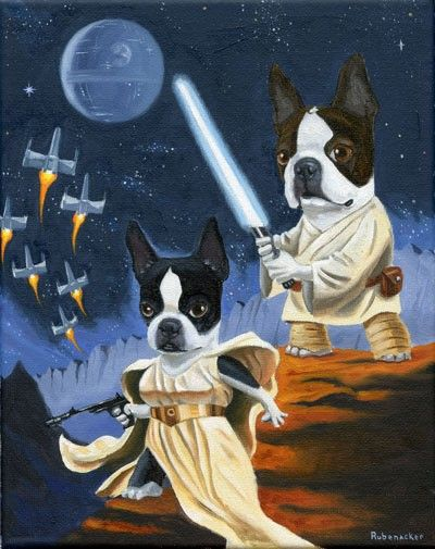 Luke en Leia Terrier - Boston Terrier hond kunst print