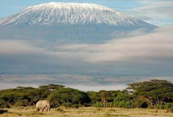 Wandershare | Kilimanjaro Day Treks in Tanzania