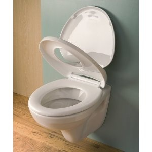 toilet seat for adults. New Soft Close Toilet Seat for Parent and Child 16 best Potty images on Pinterest  Toilets Kid stuff