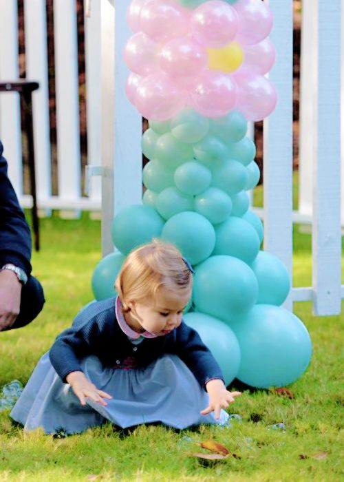 Princess Charlotte is guests of honour on their first joint official engagement and are thrilled by a petting zoo and puppet show. September 29,2016