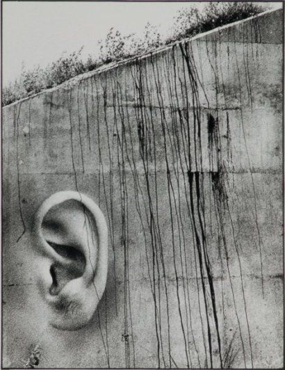 Why don't you say it? 1973 byJoan Fontcuberta