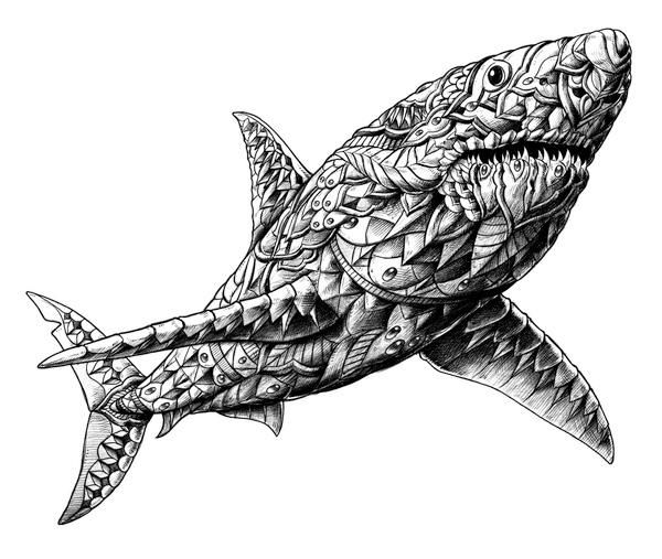 coloring page of a shark - shark bioworkz adult colouring under the sea fish