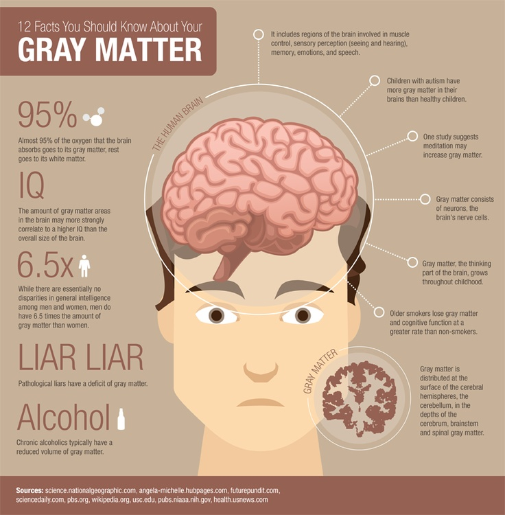 25 Facts You Should Know About Your Gray Matter