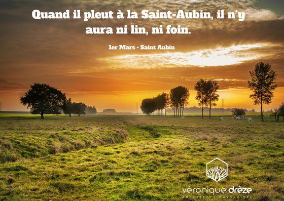 Quand il pleut à la Saint-Aubin, il n'y aura ni lin, ni foin - Dicton paysagiste