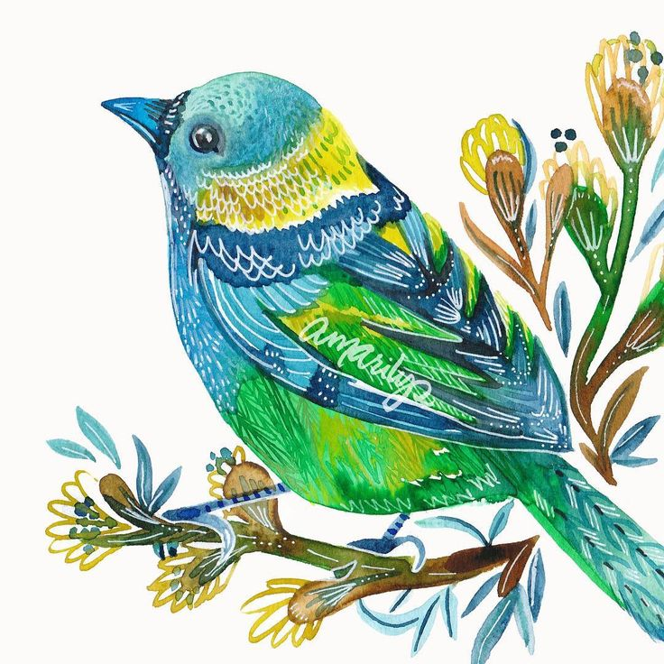 Whatchu lookin at? #42colorbirdz in Calypso Green #tanager #bird. #the100dayproject #putabirdonit