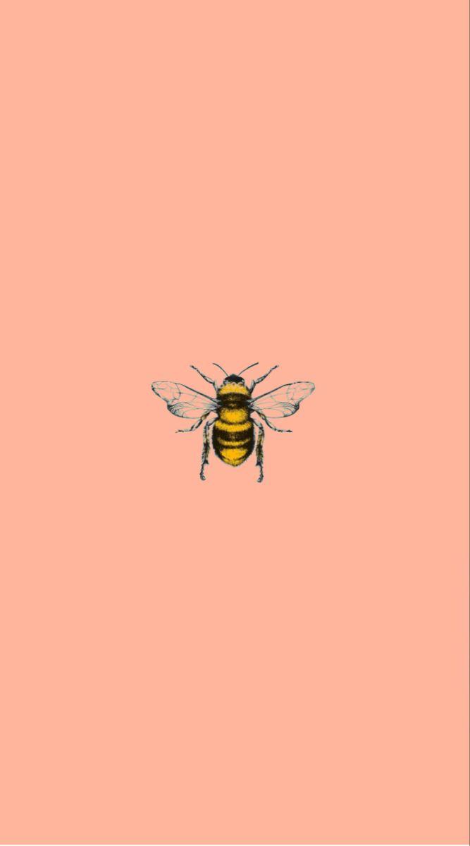 Bumble Bee Wallpaper Wallpaper Minimal Wallpaper Nature Wallpaper