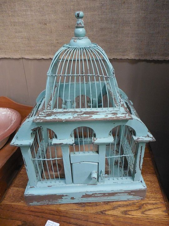 Como restaurar una jaula.