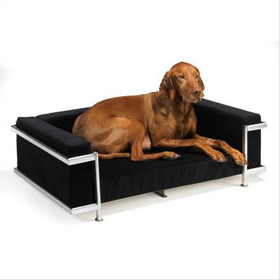 Dog Beds   ooh lala this is for the dog that has everything and a simple dog bed ...