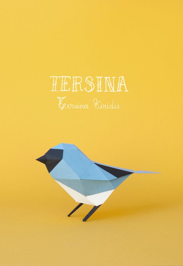 Carolina et Juan, deux directeurs artistiques et designers basés à Buenos Aires, réunis sous le nom de Estudio Guardabosques ont réalisé différentes séries d'animaux en papier : des races différentes d'oiseaux, des renards et des ratons laveurs. Une sélection de leurs créations est disponible en images.