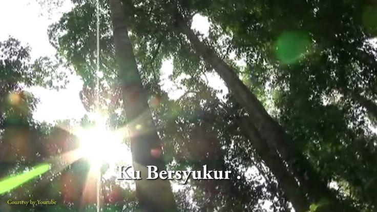 Song Bioactiva