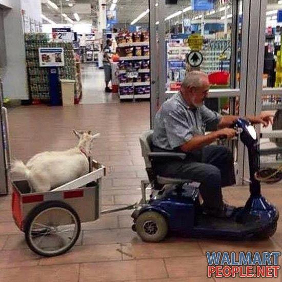 People Of Walmart Part 104 Pics 4 People Of Walmart