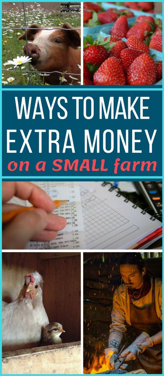 52 Ways to Make Money Homesteading – Saving time/money