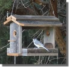 how to build a bird feeder - Google Search