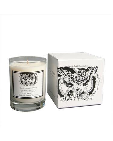 Eucalyptus, Mint and Sage Candle - Owl
