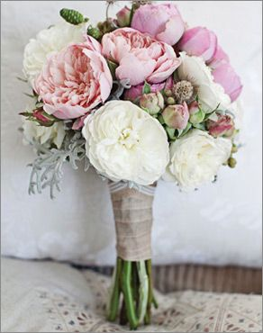 Willoughby Road, Auckland - Boutique Wedding Flowers