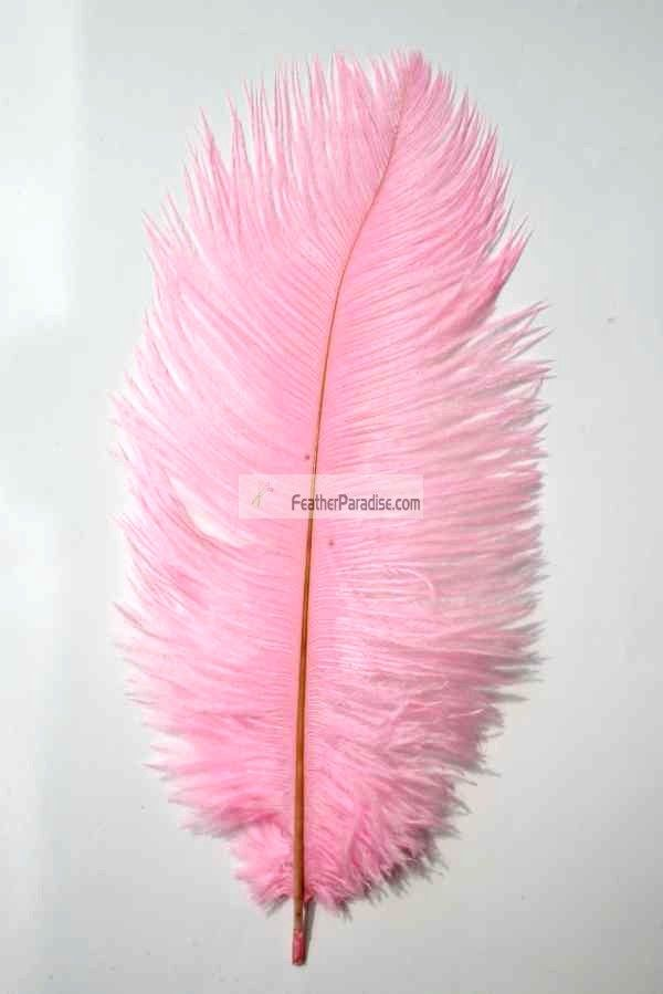 Baby Pink/Candy Pink Ostrich Feathers/plumes 16-18 inch 12 Pieces