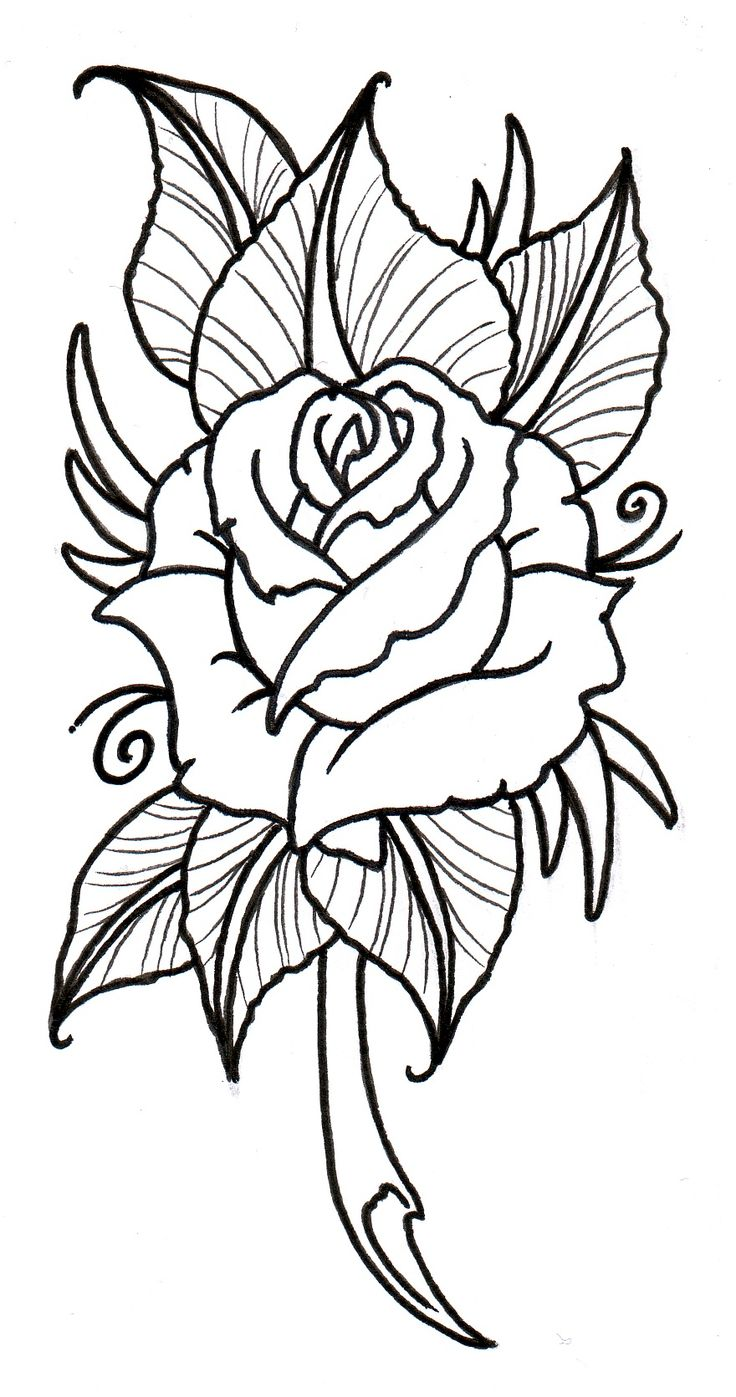 Tattoo design picture - Outline For New Neotraditional Rose Tattoo Flash Neo Traditional Rose Outline