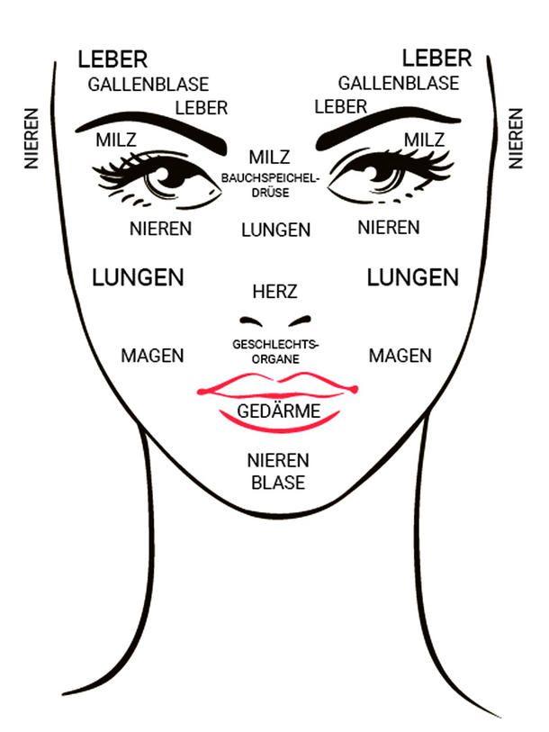 So wie unsere Augen der Spiegel unserer Seele sind, ist unsere Haut der Spiegel unserer Gesundheit. Vor allem im Gesicht sind