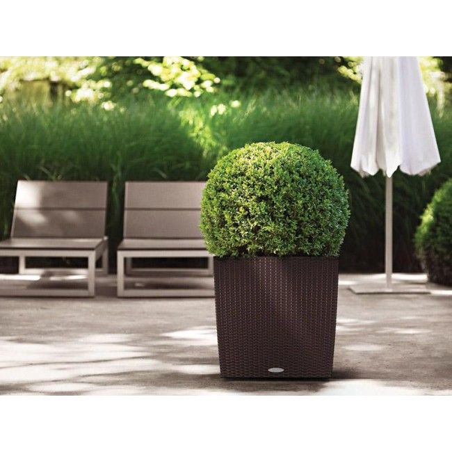Lechuza Square Cottage Patio Planter. Cottage PatioSelf Watering ...