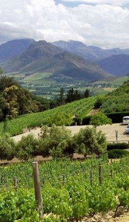 Franschhoek, SA. South Africa roadtrip (thank you Jax!). lots of miles, amazing views, great food and the best company!