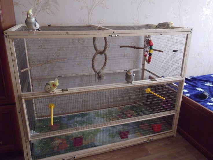 клетка попугая своими руками - Поиск в Google