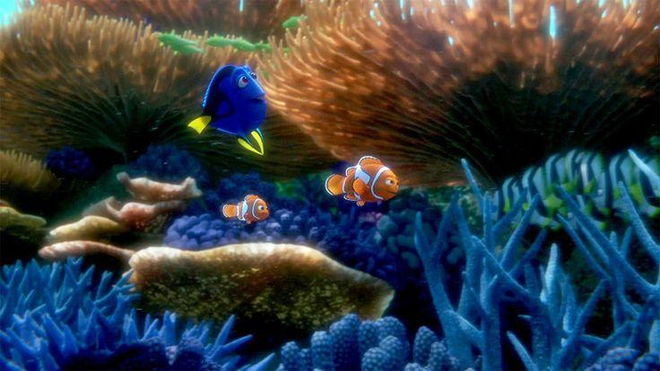 Navega con el nuevo tráiler de Buscando a Dory #trailer #cine