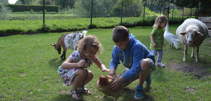 Naar de kinderboerderij Domein Tivoli in Mechelen