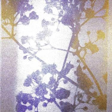 "Saatchi Art Artist Sophie Walker; Photography, ""Light on Flowers"" #art"