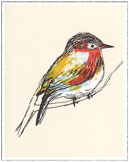 Red & Yellow Bird Note Card