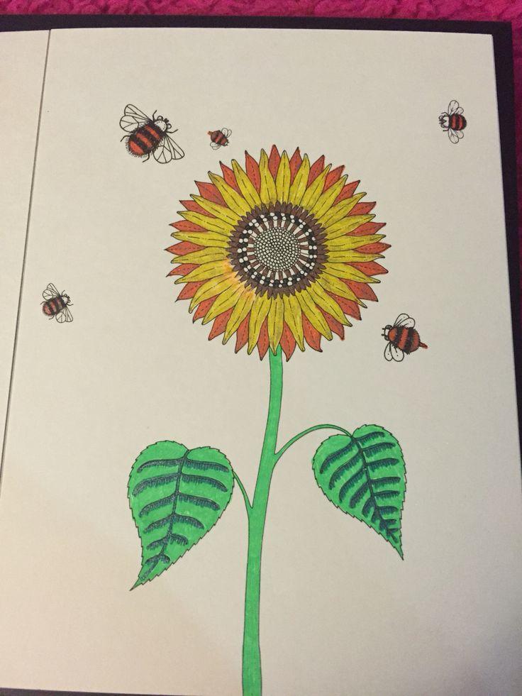 Secret Garden Colored With Gel Pens Postcard Book