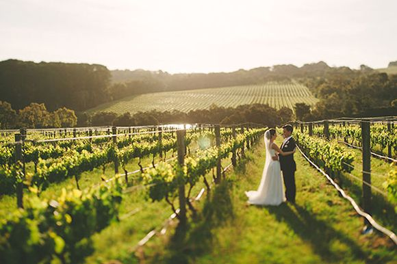 Mornington Peninsula Vineyard Wedding by Aparat Photography