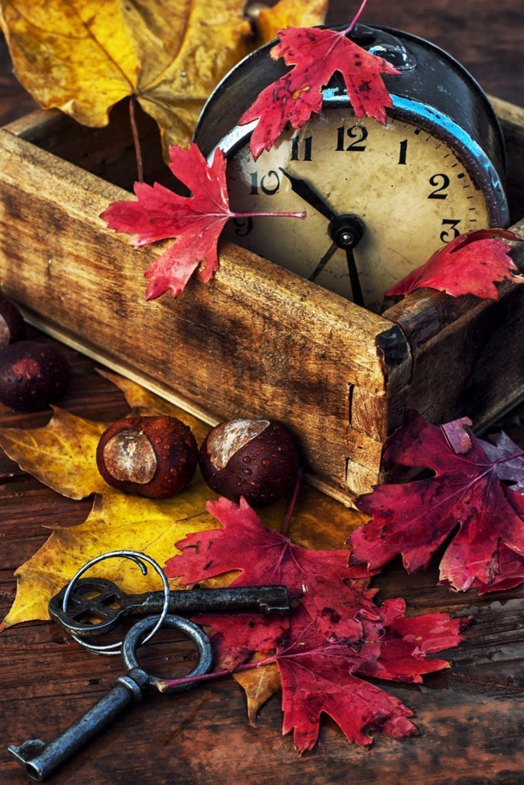DIY Autumn ~ add foliage, nuts, old clock to weathered wood box for easy decor. Labor Junction / Home Improvement / House Projects / Autumn / DIY / House Remodels / www.laborjunction.com