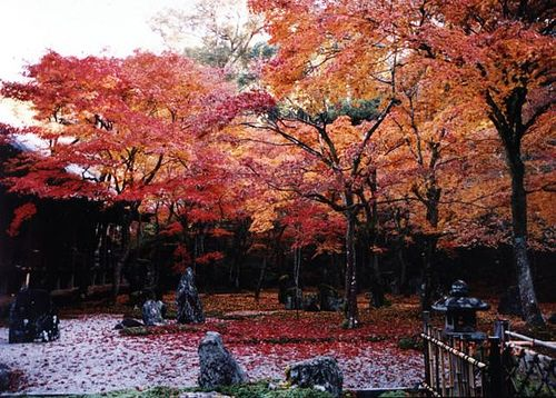 Fukuoka, Japan (would love to visit my dear Pen Pal Yumiko ... - photo#31