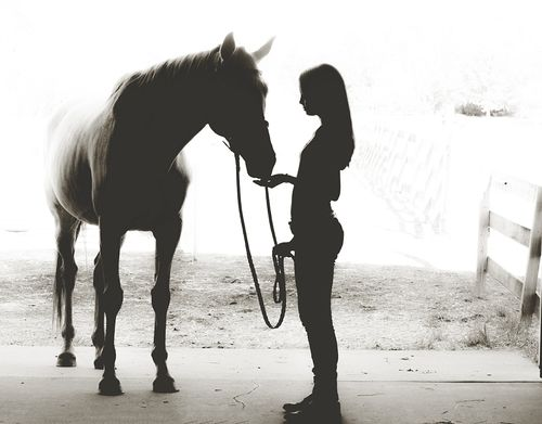 Full shadow shot in barn of girl & horse looking at each other. Horse facing camera. Girl standing sideways.