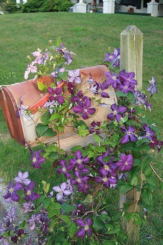 Garden Ideas Around Mailbox 31 best mailbox planter ideas images on pinterest | mailbox