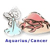 Aquarius/Cancer ~ Astro Match!