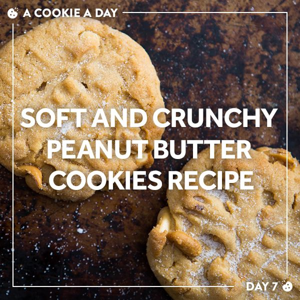 A nut-cookie classic for classic cookie nuts.