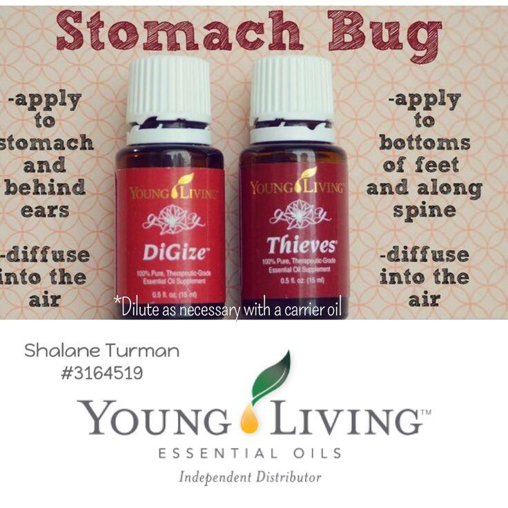 Essential Oils for Stomach Bug