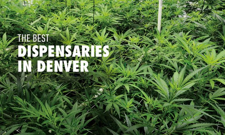 Best Weed Dispensaries in Denver, Colorado | Highsnobiety