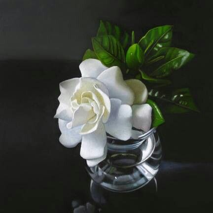 Love Gardenias
