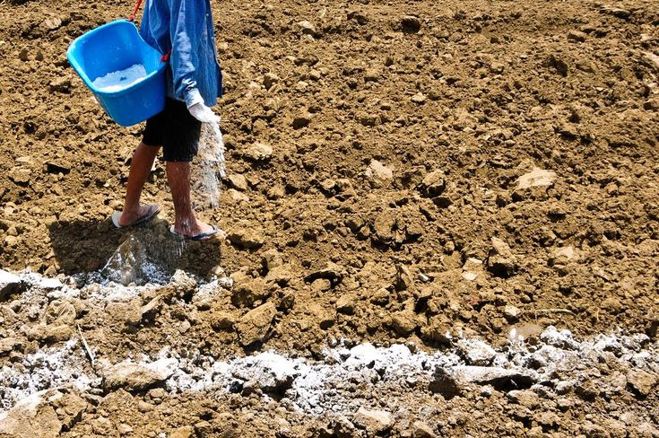 How to break up clay soil in garden clay soil lawn