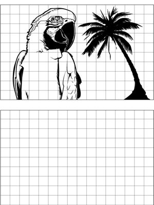 it s easy to learn to draw a parrot with this printable drawing tool